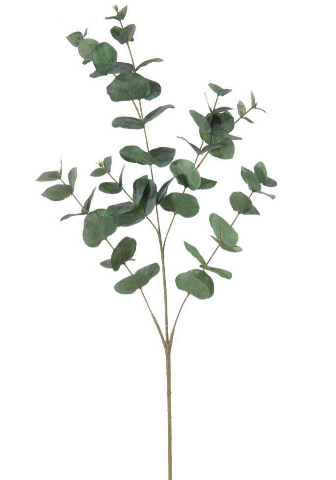 Eucalyptus l90cm