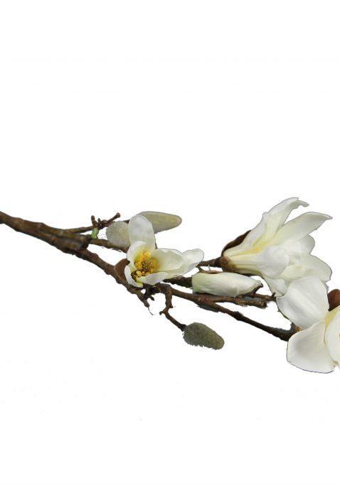 Magnolia L87cm Creme