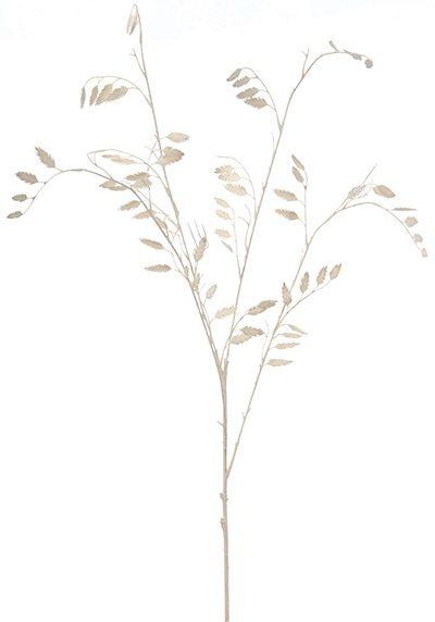 Tricicum