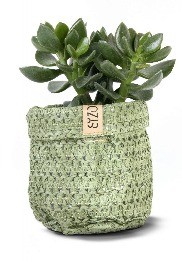 Knitt olive_1